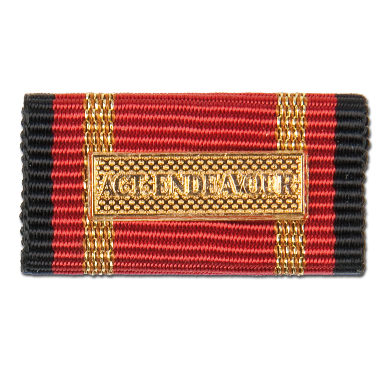 Medalla al servicio Active Endeavour dorada