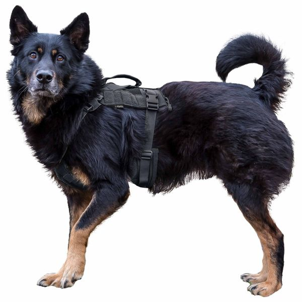 Primal Gear Arnés para perro Tactical Dog Harness negro