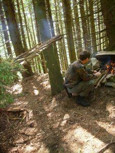 Dans la forêt Vosgienne