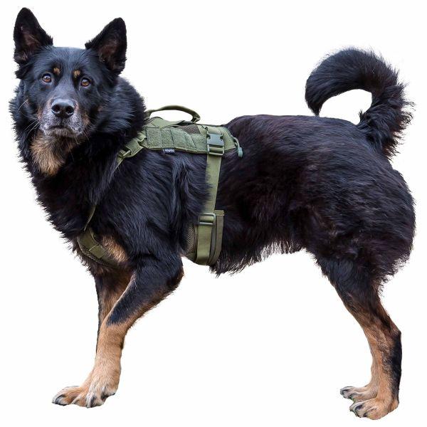 Primal Gear Arnés para perro Tactical Dog Harness oliva