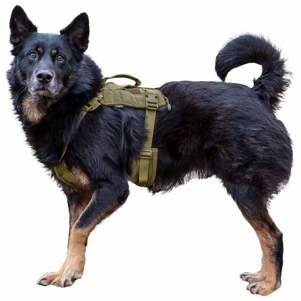 Primal Gear Arnés para perro Tactical Dog Harness tan